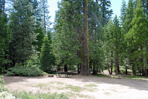 Brightman Flat Campground, Stanislaus National Forest, CA