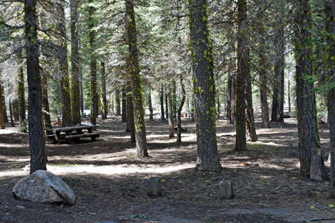 Clark Fork Campground, Stanislaus National Forest, CA