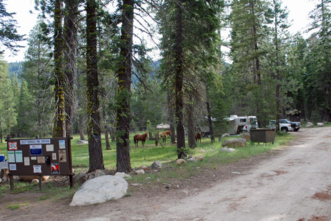 Clark Fork Horse Campground, Stanislaus National Forest, CA