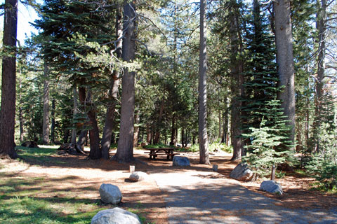 Campsite at Lake Alpine Campground, Stanislaus National Forest, CA