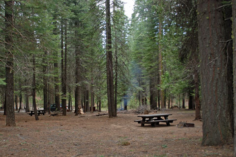 Campsite at Meadowview Campground, Pinecrest Lake, Stanislaus National Forest, CA