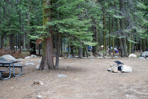 Campsite at Pinecrest Lake Campground, Stanislaus National Forest, CA