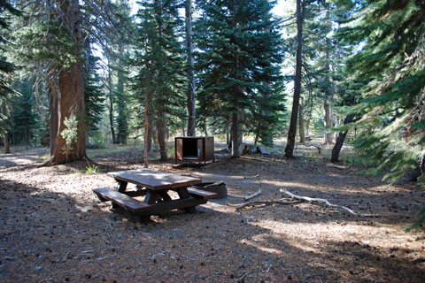 Agnew Meadows Campground, Inyo National Forest, CA
