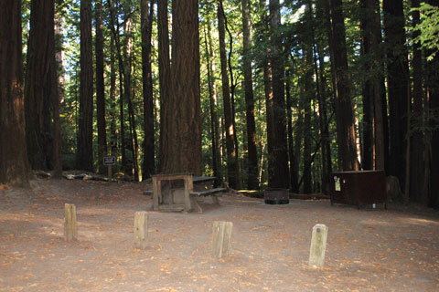 Ben Reis Campground in Butano State Park, CA