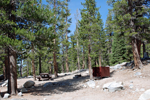 Coldwater Campground, Mammoth Lakes, CA
