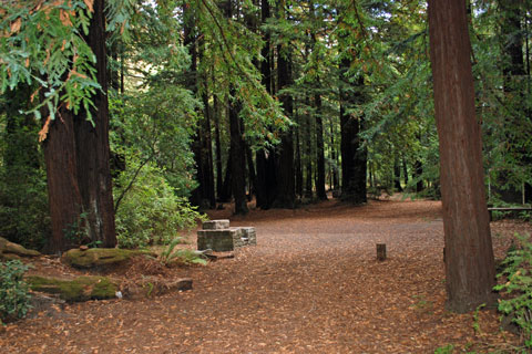 Memorial Park campground, San Mateo County, CA