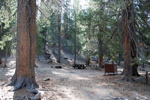 Minaret Falls Campground, Inyo National Forest, CA