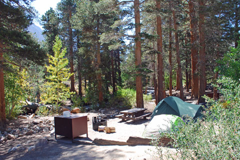 Bishop Park Campground,  Inyo National Forest, CA