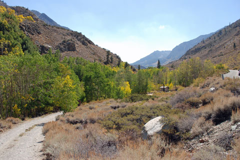 Mountain Glen Campground,  Inyo National Forest, CA