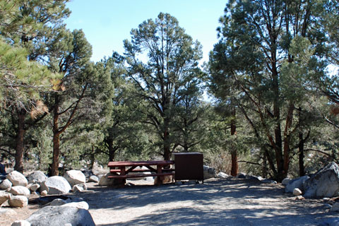 Tuff Campground,  Inyo National Forest, CA