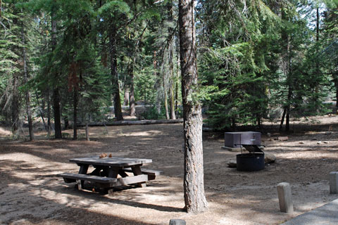 Lower Stony Creek Campground, Sequoia National Monument