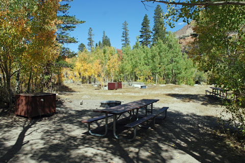 Table Mountain Group Campground,  Inyo National Forest, CA