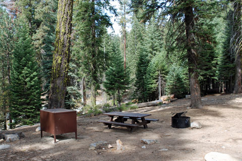 Upper Stony Creek Campground, Sequoia National Monument