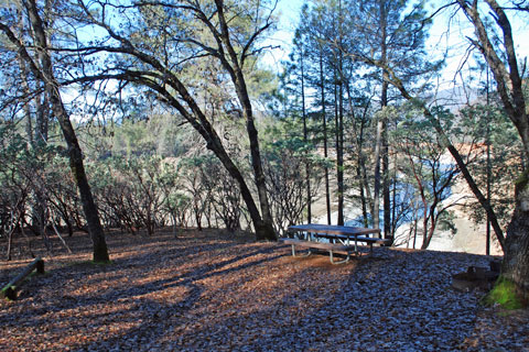 Gregory Creek Campground at Shasta Lake