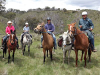 group of horseback riders