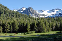 Kennedy Lake area, Tuolumne County, CA