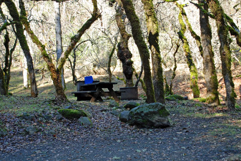 Ritchey Campground in Bothe-Napa Valley State Park, CA