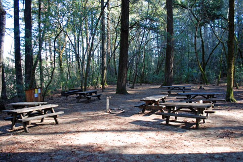 Group Campground in Bothe-Napa Valley State Park, CA
