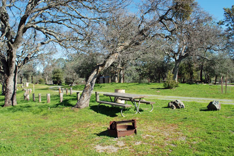 Oaks Campground, Pardee Lake, CA