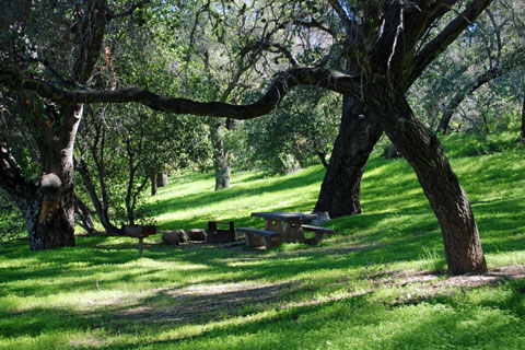 Fremont Campground, Los Padres National Forest, CA