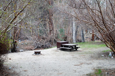 Sage Flat Campground, Big Pine Creek,  Inyo National Forest, CA