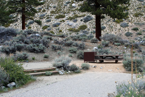 Upper Sage Flat Campground, Big Pine Creek,  Inyo National Forest, CA