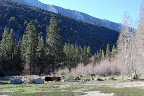 Aspen Group Campground, Big Pine Creek,  Inyo National Forest, CA