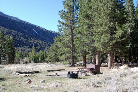 Big Meadow Campground, Rock Creek,  Inyo National Forest, CA