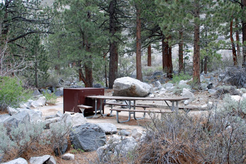 Big Pine Creek Campground,   Inyo National Forest, CA