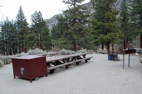 Palisade Glacier Group Campground, Big Pine Creek,  Inyo National Forest, CA