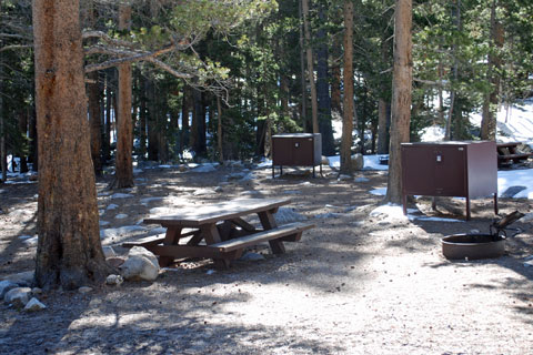 Pine Grove Campground, Rock Creek  Inyo National Forest, CA