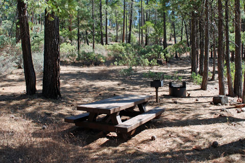 Stoney Point Campground at Trinity Lake