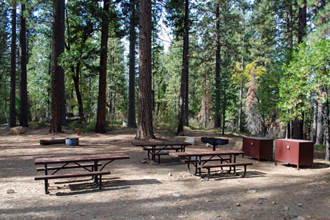 TeleLi puLaya Group Campsite, Stanislaus National Forest, CA