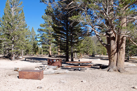 Cottonwood Pass Trailhead Campground, Inyo National Forest, CA