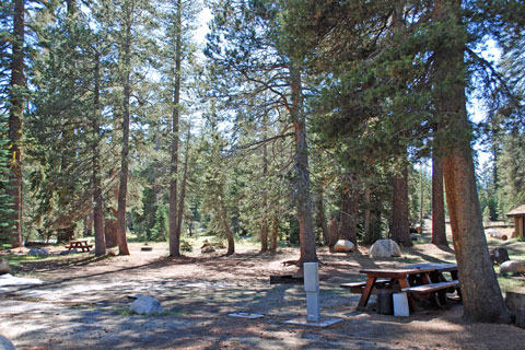 Pacific Valley Campground, Ebbetts Pass,  CA