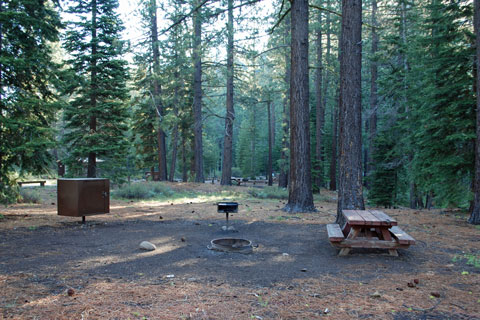 Goose Meadows Campground, Tahoe National Forest