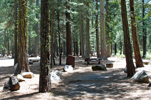 Yellowjacket Campground, Union Valley Reservoir, CA