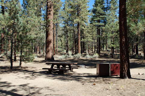Heart Bar Campground, San Bernardino National Forest, CA