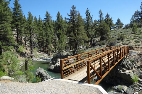 Leavit Meadow bridge, Humboldt-Toiyabe National Forest, CA