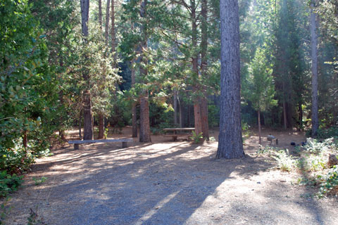 Sims Flat Campground, along the Sacramento River in the Shasta-Trinity National Forest, CA