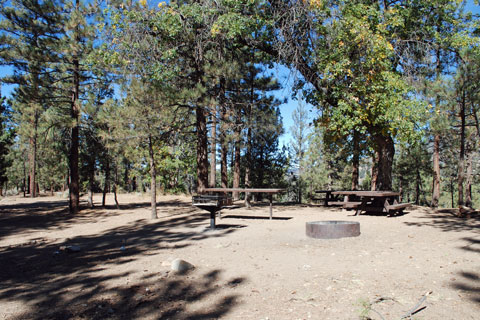 Skyline Group Campground, San Bernardino National Forest, CA
