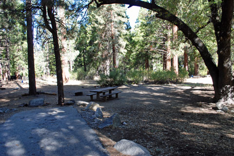 South Fork Campground, San Bernardino National Forest, CA
