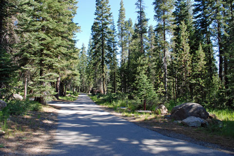 Findley Campground, Jackson Meadows Reservoir, Tahoe National Forest