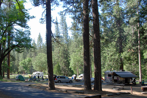 Wawona Campground, Yosemite National Park
