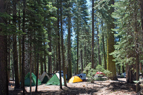 Lost Creek Group Campground, Lassen Volcanic Natiional Park