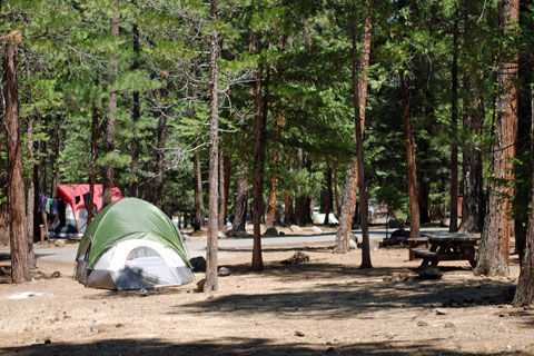 McArthur-Burney Falls State Park campground