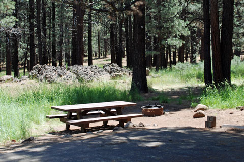 Cottonwood Springs Campground, Frenchman Lake, Plumas National Forest