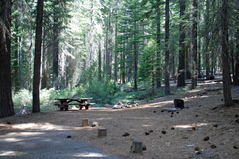 Running Deer Campground,  Little Grass Valley Reservoir, Plumas National Forest