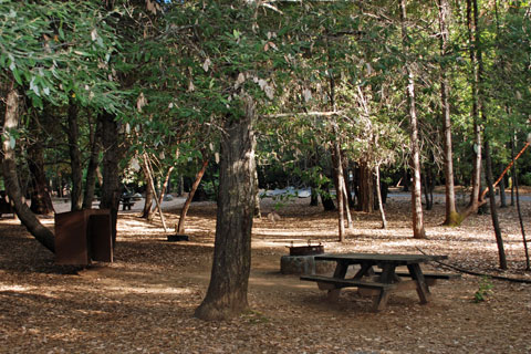 Schoolhouse Campground, New Bullards Bar Reservoir, CA