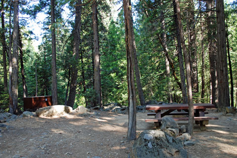 Wild Pumb  Campground, Tahoe National Forest